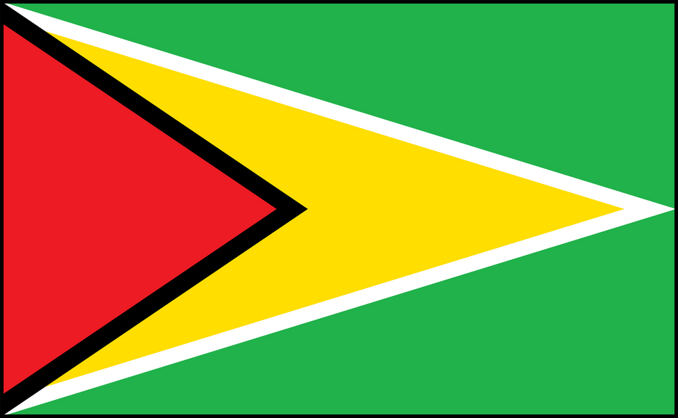 Image of Guyana flag